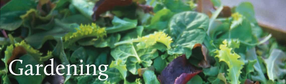 gardening_banner_1140-335
